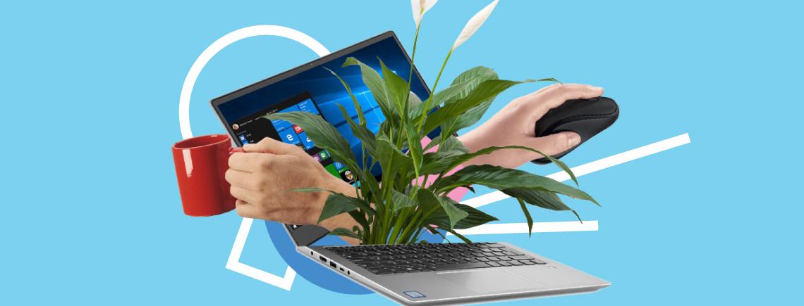 02d01e2bbebe Как проверить б у ноутбук при покупке  пошаговая инструкция ...